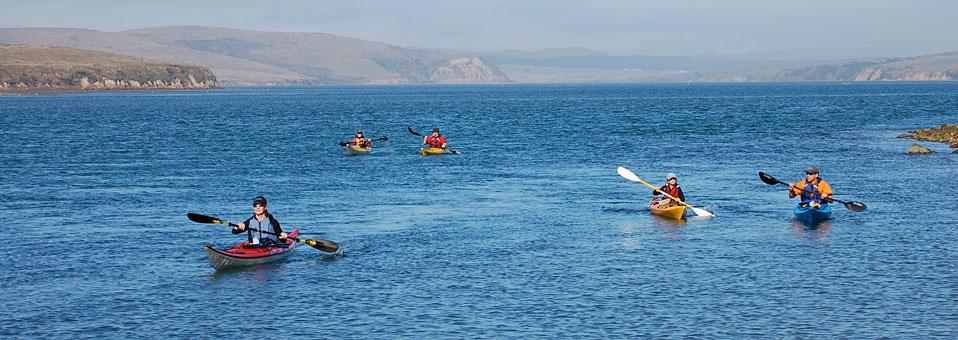 Drakes Estero Kayak Tour 7/5