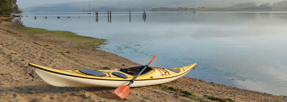 Tomales Bay Introductory Kayak Tour 10/17