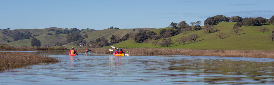 Petaluma Marsh Tour