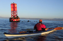 GPS Navigation Class On Tomales Bay – January 24