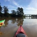 Paddling The Petaluma River