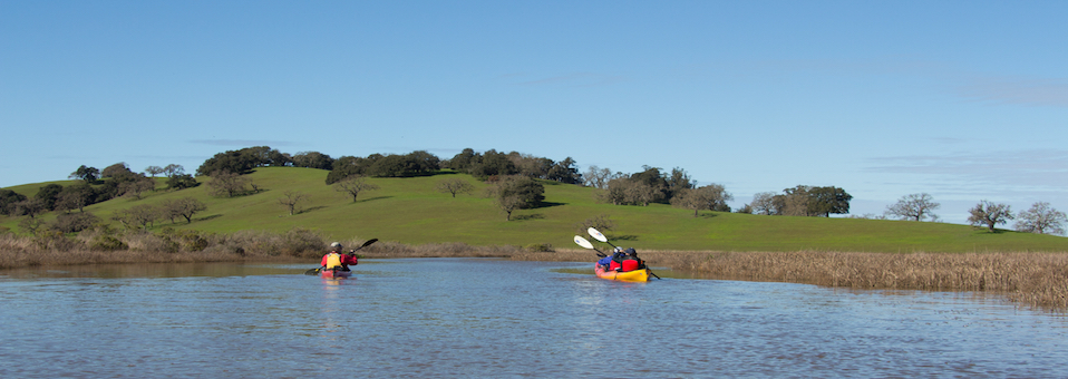 Petaluma Marsh Kayak Tour 12/11