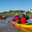 Petaluma Marsh Evening Tour July 29