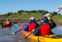 Petaluma Marsh Kayak Tour