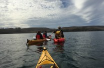 Clavey Paddlesports Resource Page